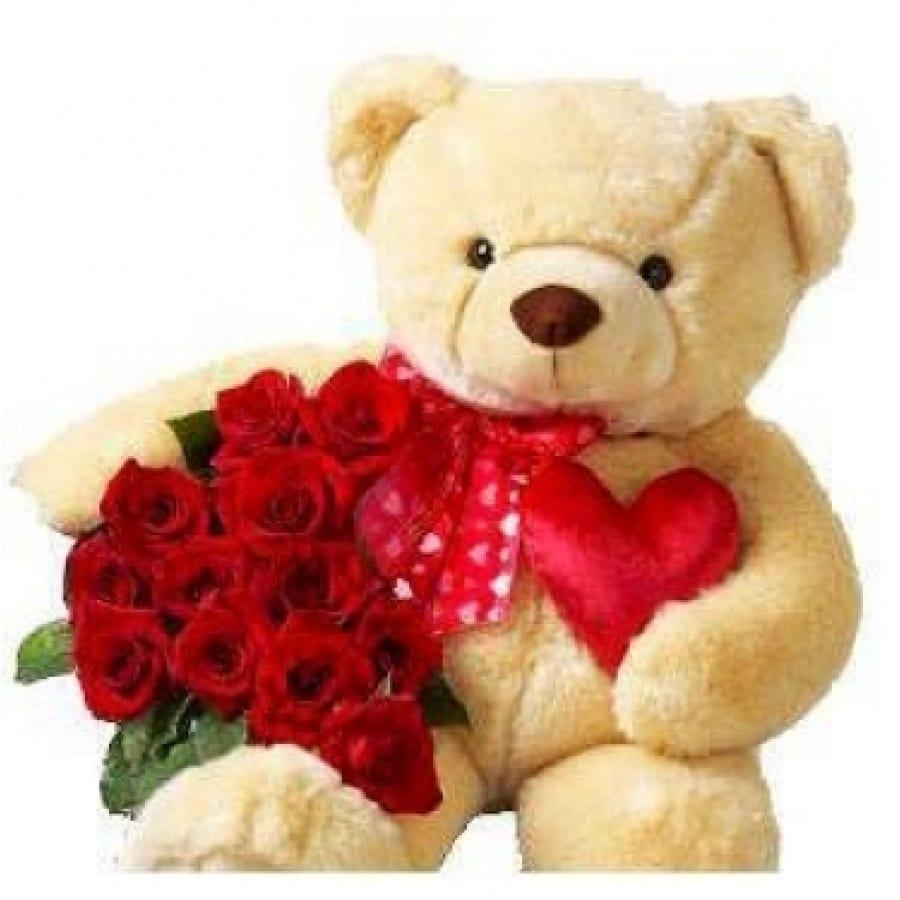 Peluche 40cm + 1 Bouquet de 15 Rosas